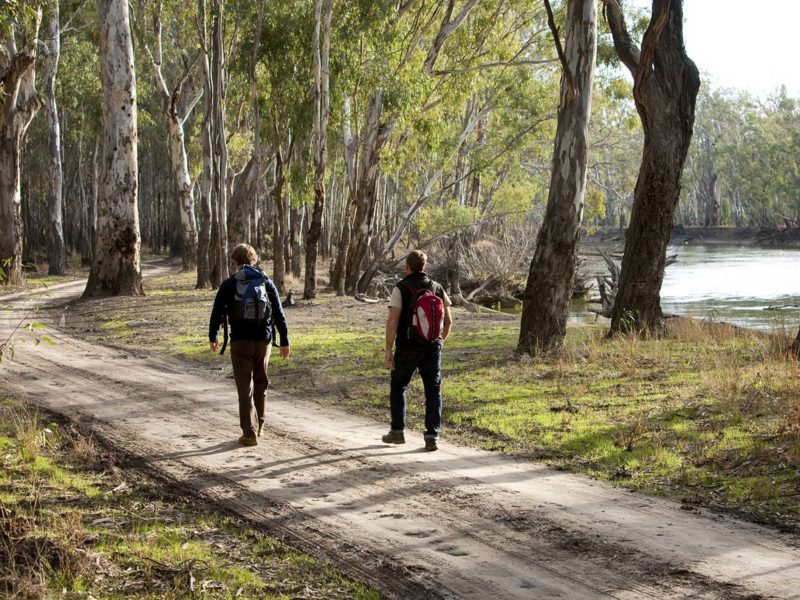 walking-barmah-state-park